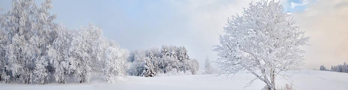 鳌山滑雪票